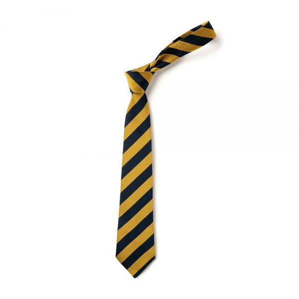 St. Augustine's Tie