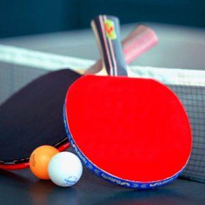 Table Tennis Equipment & Accessories